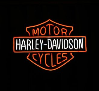LED FLEX mini-Harley Davidson